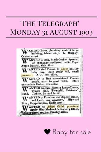 'The Telegraph' Monday 31 August 1903, Brisbane